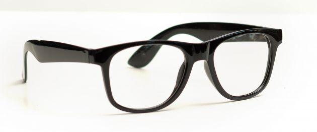 Wayfarer Glasses