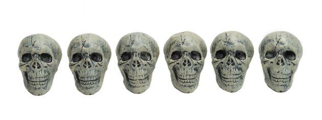 Skull Decoration Set - 6 pcs 12,5 cm