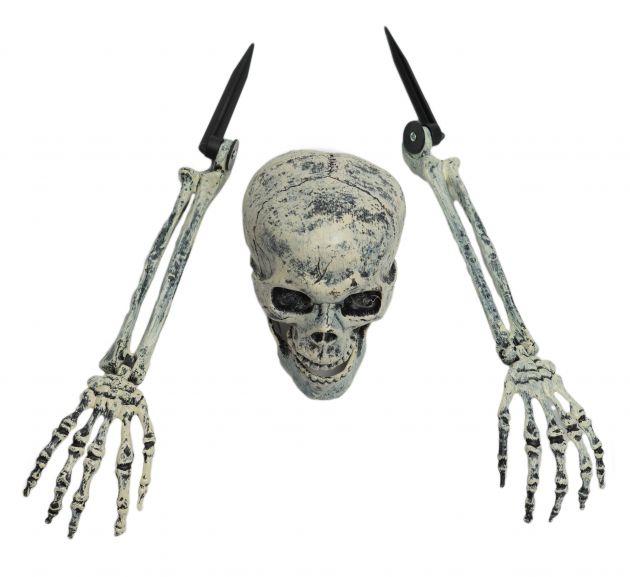 Burried Alive Skeleton