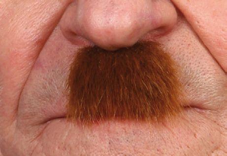 Mustache Charlie Chaplin Light Brown