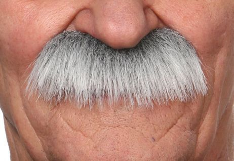 Mustache Mustafa Grey