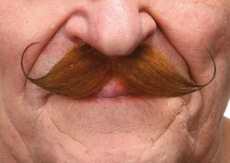 Mustache Salvador Red