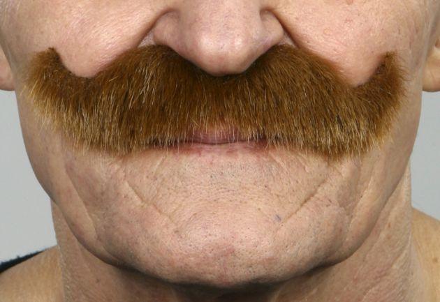 Mustache Luigi Light Brown