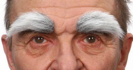 Eyebrows Grey