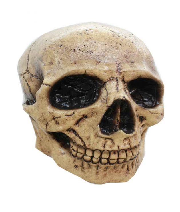 Headmask - Skull Tan 3