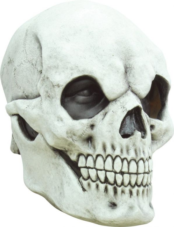 Headmask - Skull White 1