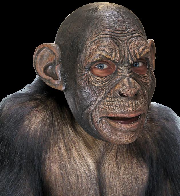 Volledig Hoofdmasker - Blake Ape / One-size