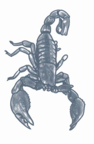Prison Tattoos - Scorpion